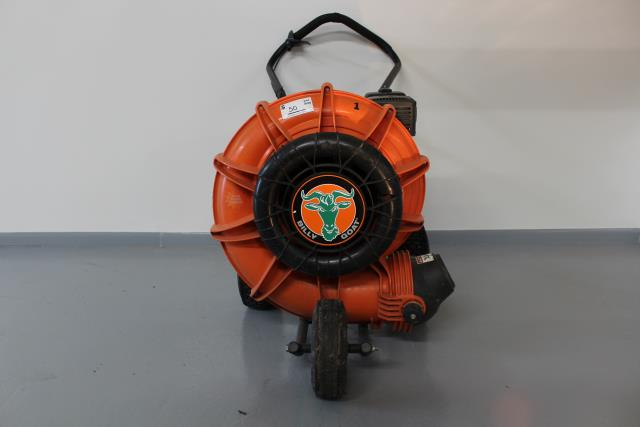Where to find LARGE LEAF BLOWER  1 G in Grant